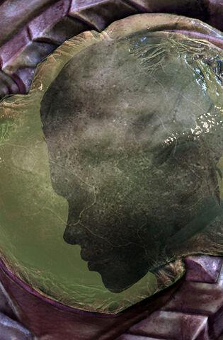 File:KerriganChrysalis SC2-HotS Head1.jpg