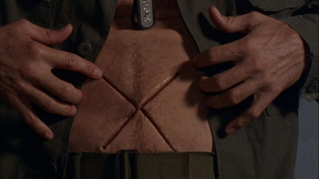 File:SymbiotePouch.jpg