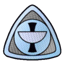 File:Epsilon9 gray insignia.jpg
