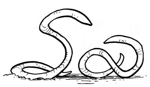 File:Ylesian white worm.jpg