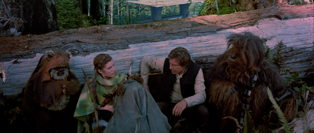 File:Wicket and Rebels.png