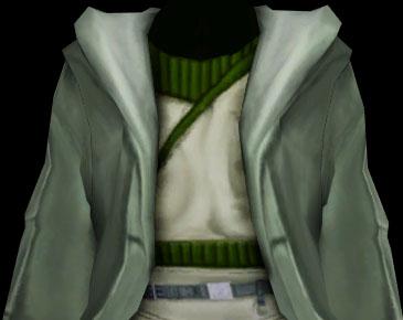 File:Nomi's robe.jpg