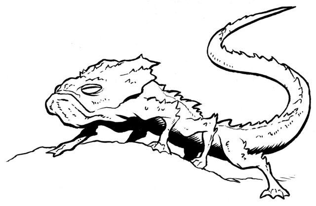 File:Sun-lizard.jpg