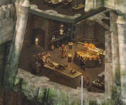 Mazs Castle Kitchens
