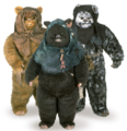Ewoks Encyclopedia.png