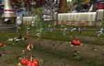Kalikori crops attack