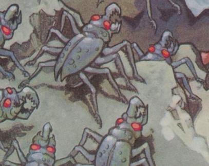 File:SpiderRoach.jpg