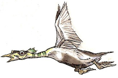 File:Quadduck-WOSWFG.png