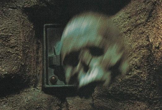 File:Kwerve skull.jpg