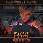 Two Week countdown