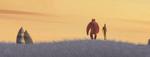 Zeb in a field