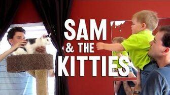Sam Meets The Kitties (Day 1236 - 4 13 13)