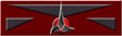 Second Federation-Klingon War Medal