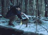 The Upside Down - Hopper leaves food