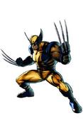 Wolverine-UMvsC3