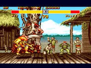 381574-street fighter 2 special champion edition hurricane kick large