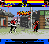Street Fighter Alpha Game Boy Color