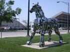 Wichita SU campus horse