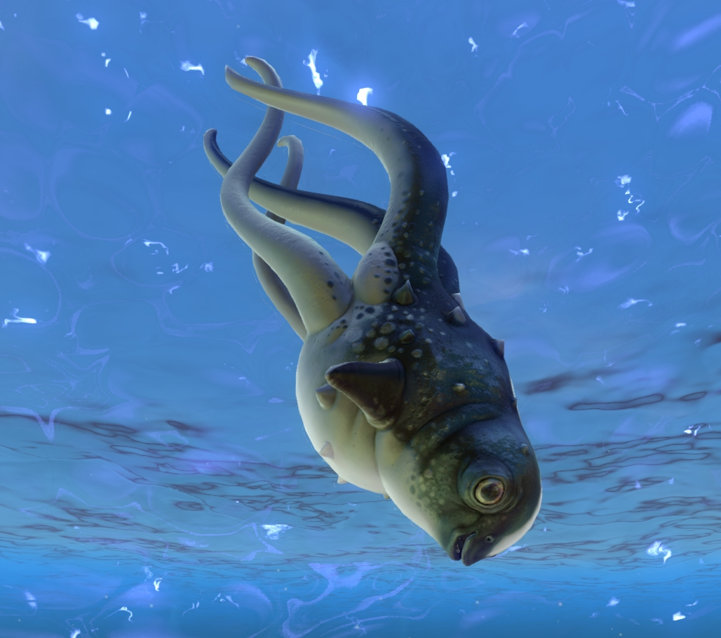 Cute Fish Subnautica Wiki