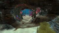 Spike Plant Caves (4)