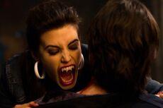 711 vampire bite