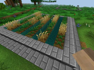 How To Plant Cotton Seeds In Survival Craft