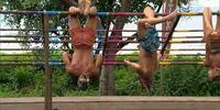 Gang Hang