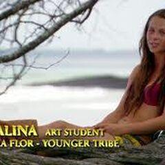 Alina makes a <a href=