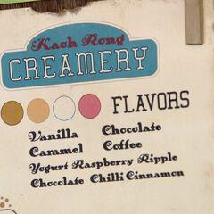 The ice cream reward.