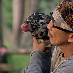 Tai with the tribe's chicken.