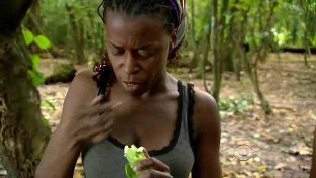 File:Survivor.s19e02.hdtv.xvid-fqm 079.jpg