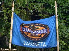 S12 Bayoneta Flag 02