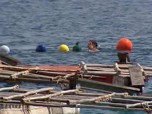 File:Survivor.Vanuatu.s09e12.Now.How's.in.Charge.Here.DVDrip 118.jpg