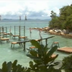 The first Immunity Challenge