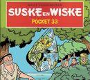 Pocket 33