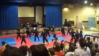 Majest Martial Arts in Sterling -- Demo Team at White Tiger Tournament