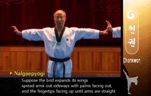 Cheonkwon1b Wingspread