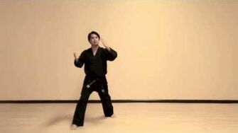 Do San (Step-By-Step) Tae Kwon Do