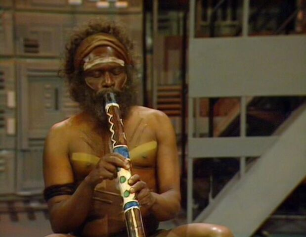 File:Didgeridoo.jpg