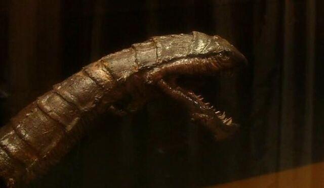 File:Museum artifact (Dalek).jpg