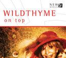 Iris Wildthyme (series)