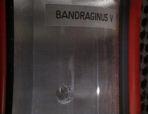 File:Bandraginus V.jpg