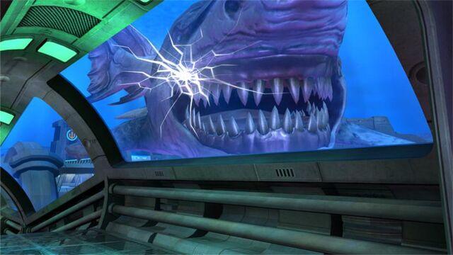 File:Shark 2.jpg