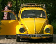Luke Beetle