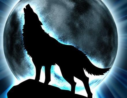 Resultado de imagen para lobo luna llena