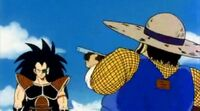 Raditz and Farmer