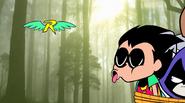 Robin Finally Calling The Robins