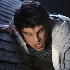 Scott in werewolf form on Allison's roof