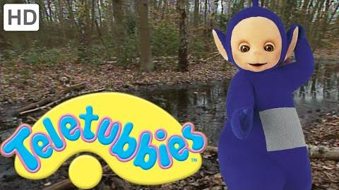 Teletubbies- Walking in the Woods - HD Video