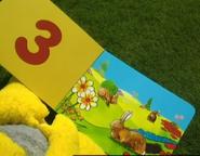 Teletubbies Rabbit Book